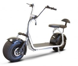 PET 2 Wheel Scooters